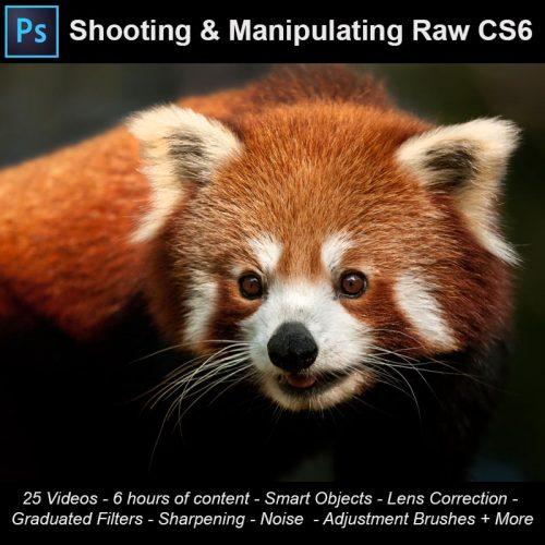 CS6 Raw