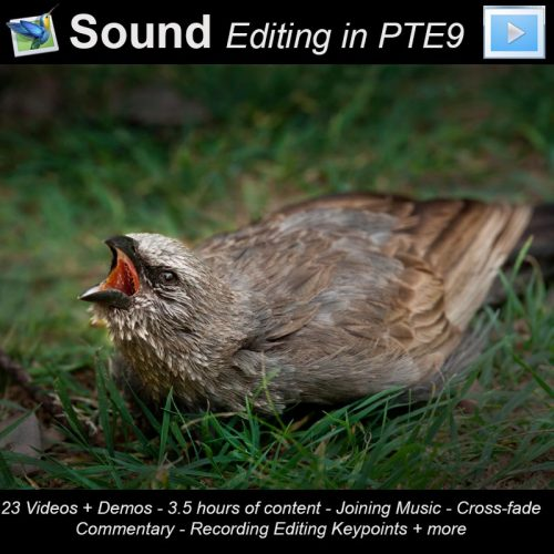 PTE9 Sound Editing